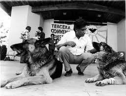 Cesar Chavez and dogs Huelga and Boycott