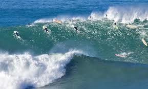 Halfmoon Bay many surfers